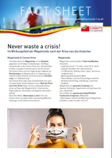 factsheet_never waste a crisis_2020